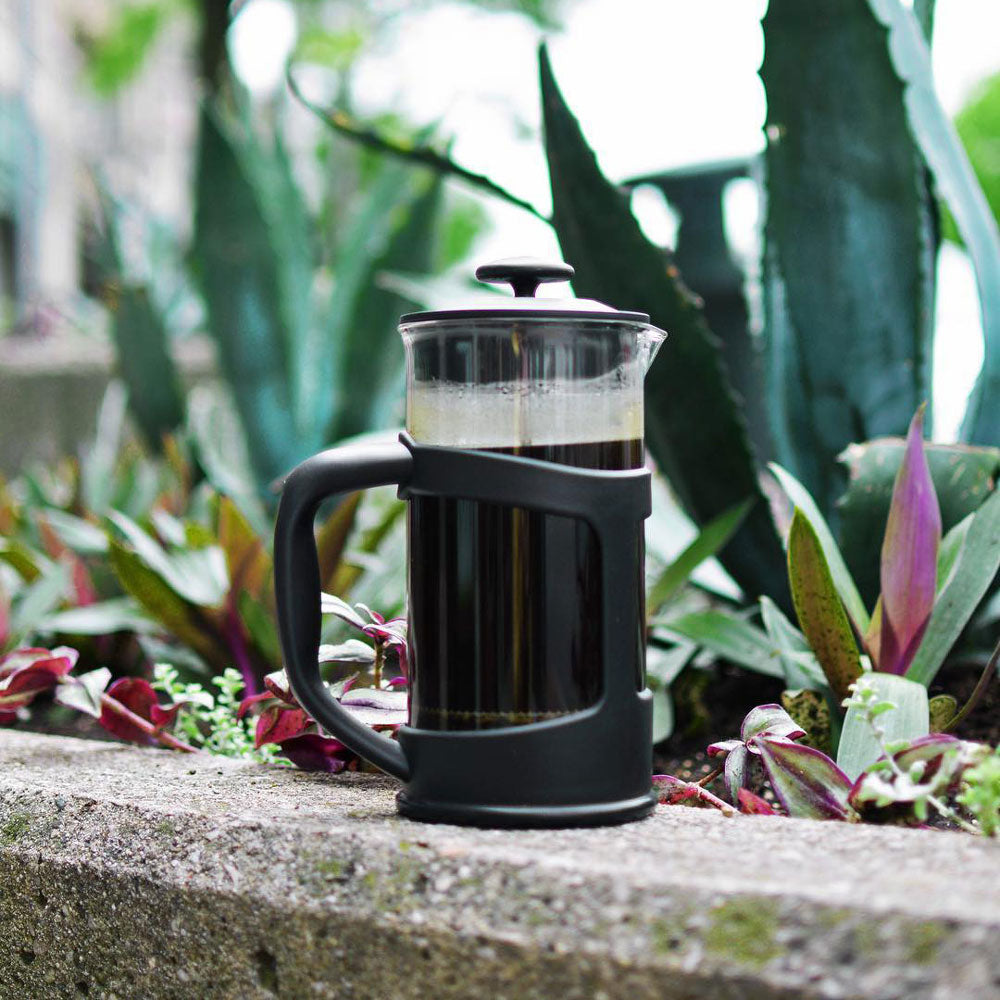 eco friendly french press wholesale canada coffee maker direct distribution online