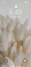 Load image into Gallery viewer, White Bunny Tails Wallpaper II