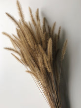 Load image into Gallery viewer, Naturally Dried Foxtail Flowers