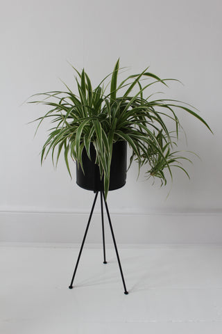 Plant Pot Holder -2 sizes