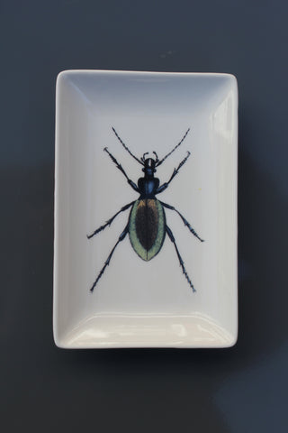 Vegan Friendly Beetle Trinket Dish