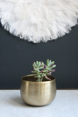 Brass plated pot - 3 sizes available
