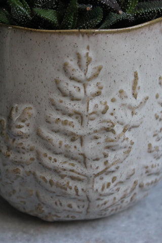Cream stoneware plant pot
