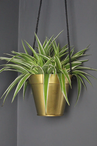 Gold Hanging Plant Pot