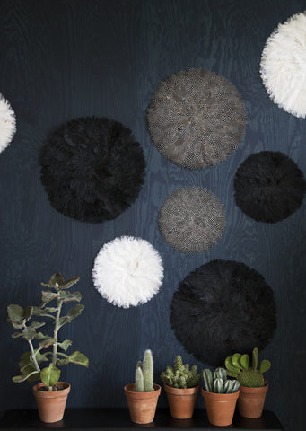 Glorious Black Feather Pad Wall Display - Small