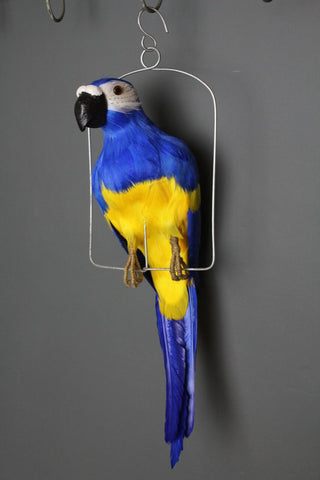 Decorative Parrot - Available in Blue Or Red