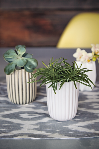 Porcelain Plant Pot - White