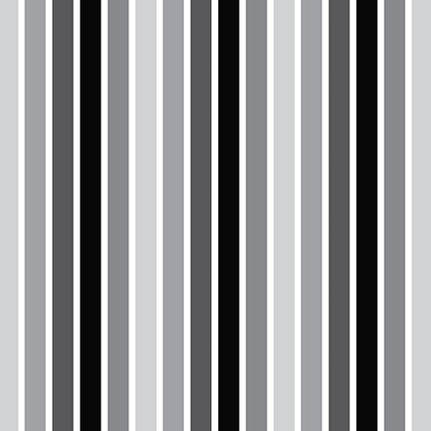 pattern of black and white stripes that go with the black and white flower pattern
