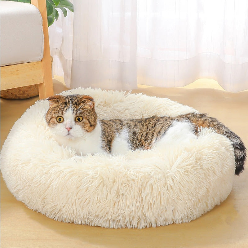Cat Comfy Bed