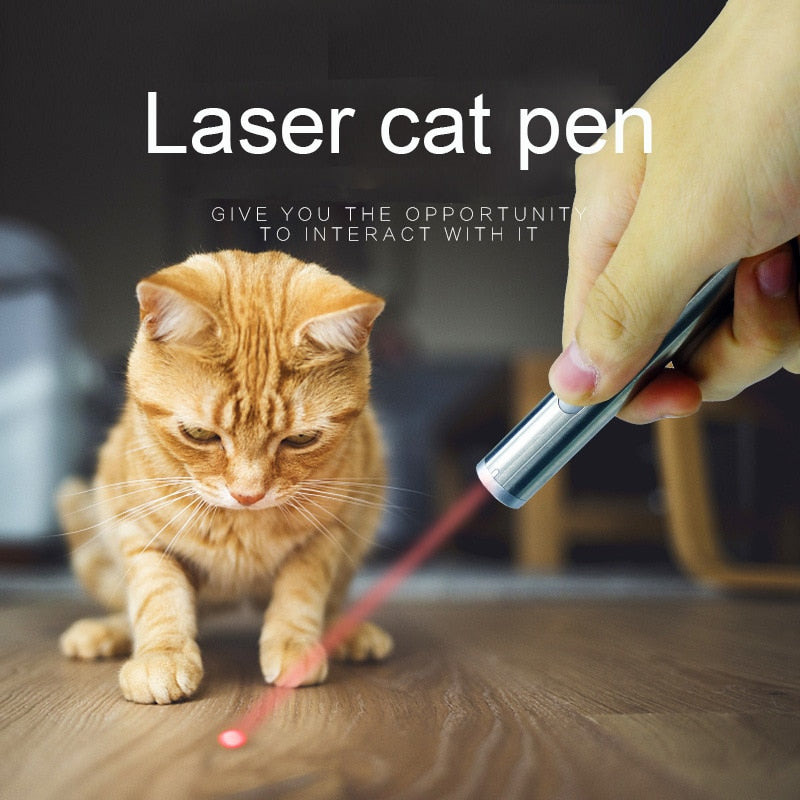 Cat Laser LED Pointer Portable Creative Funny Pet Kitten Training Toy