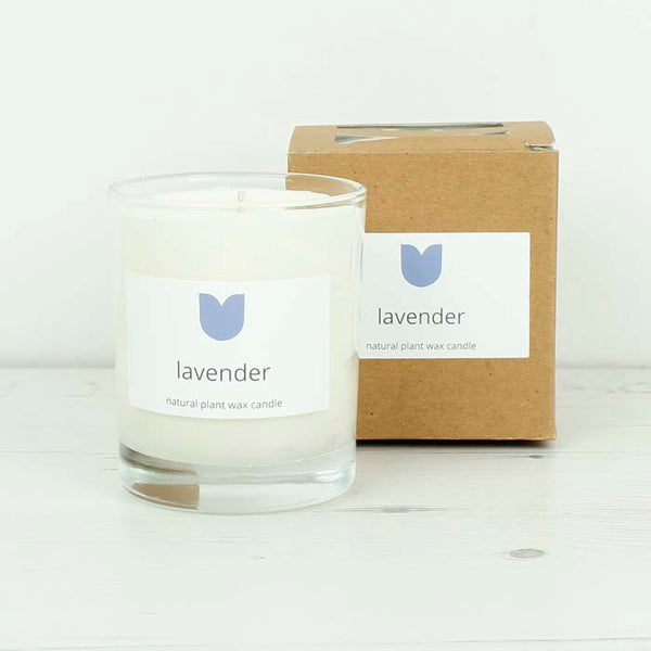 20cl Boxed Candle - Lavender