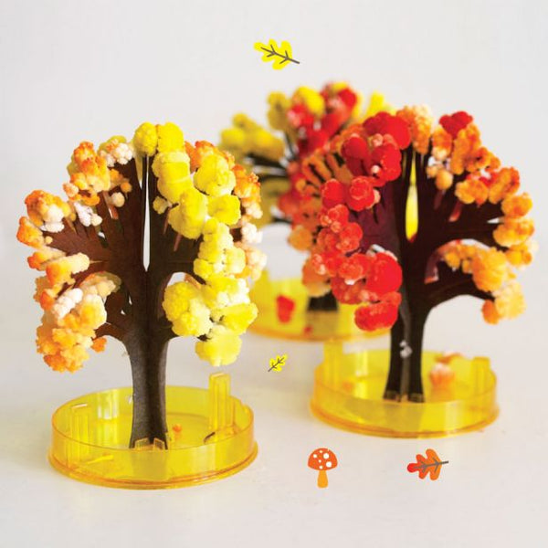 Autumn Trees Crystal Growing Kit