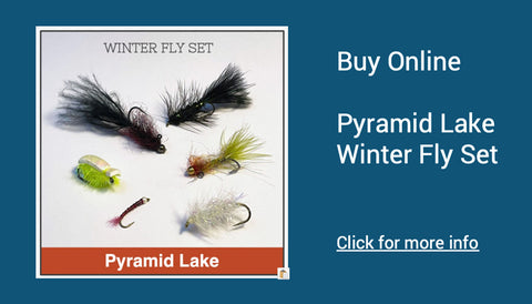 Recommended flies for Pyramid Lake
