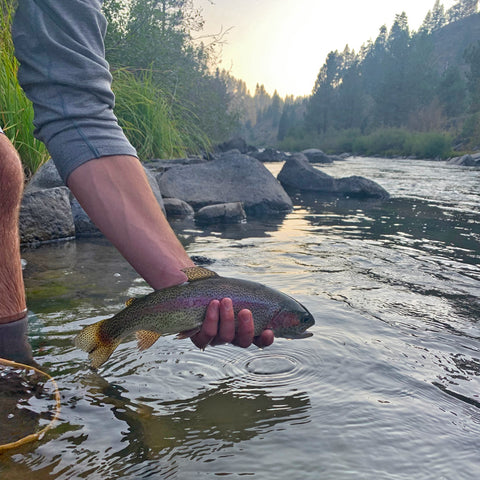 truckee river fly fishing catch and release trout