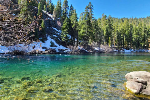 Truckee River Spring Colors Fly Fishing