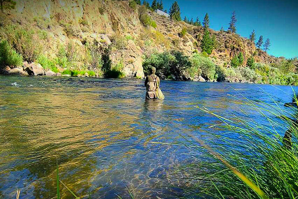 Fly fishing in the Truckee River August 2021