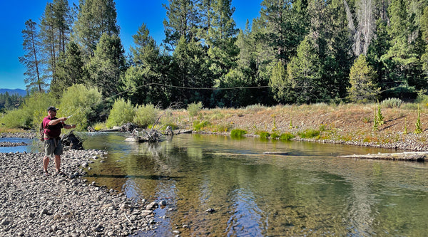 Fly casting on the Little Truckee River