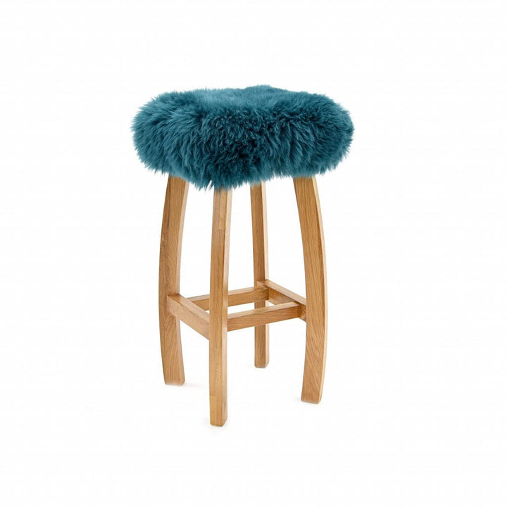 Gwyn Baa Bar Stool in Teal