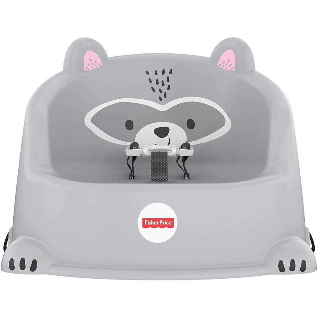 Fisher Price Hungry Raccoon Booster Seat GKF91 - Maqio