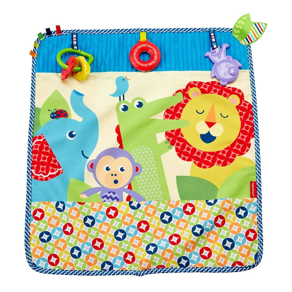 Fisher-Price On-the-Go Activity Throw - Maqio