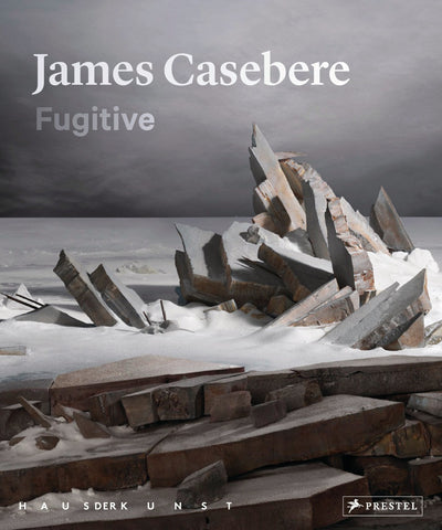 CASEBERE, JAMES. FUGITIVE