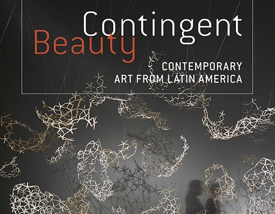 Contingent Beauty-Contemporary Art from Latin America