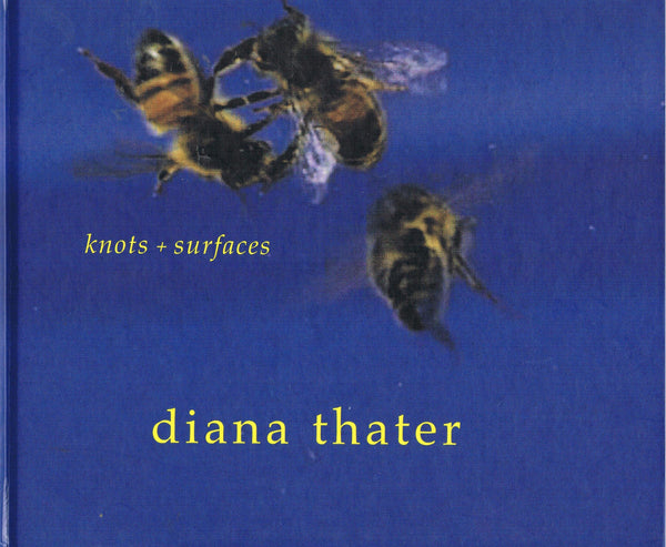 Cover photo of Diana Thater Knots + Surfaces