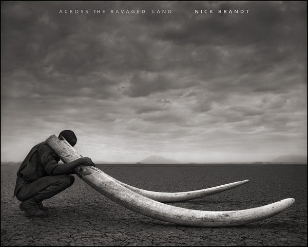 Cover image of Nick Brandt Across the Ravaged Land