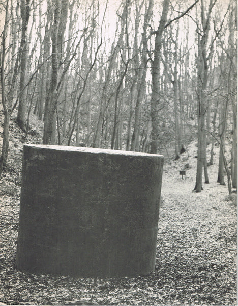 Cover photo of Richard Serra Recent Sculpture in Europe 1986-1988