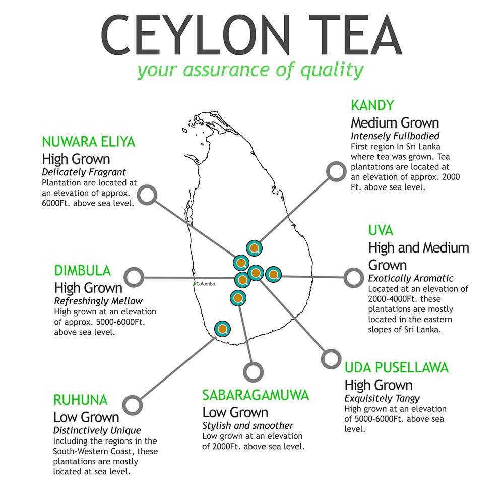 Ceylon Tea By Region