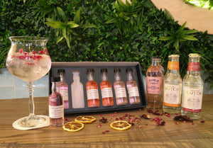 Pink gin tasting experience for two