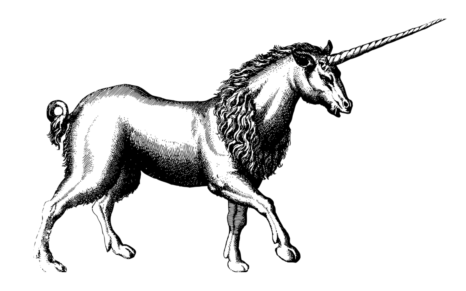 what is a unicorn
