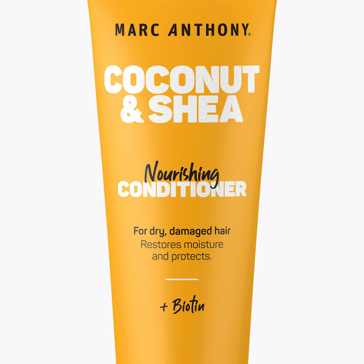 Coconut & Shea <br> Nourishing Conditioner
