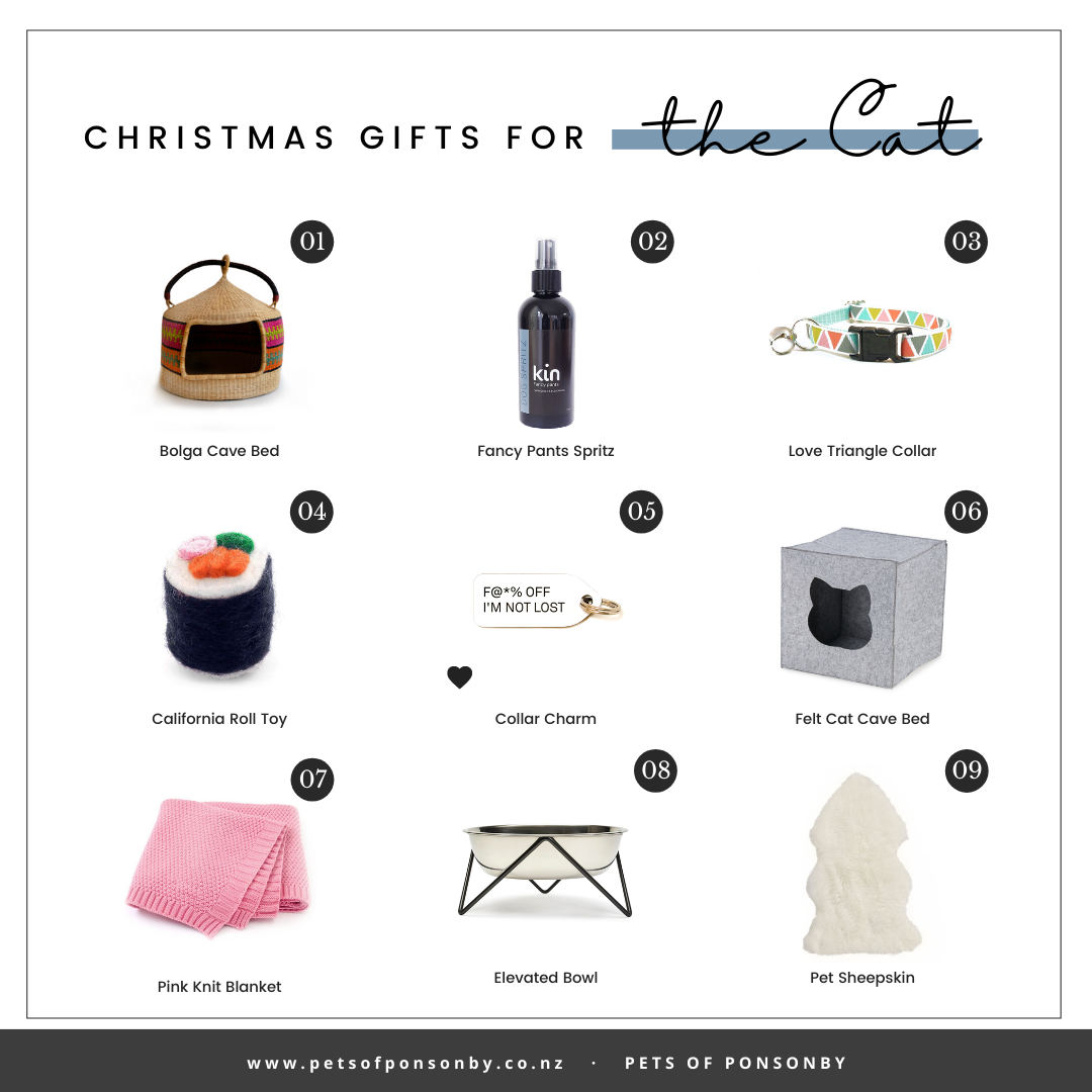 CHRISTMAS GIFT GUIDE FOR THE CAT