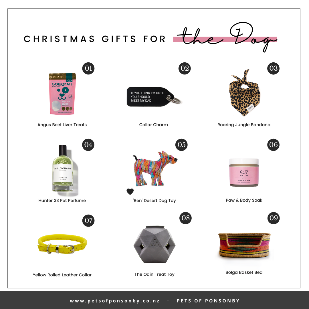CHRISTMAS GIFT GUIDE FOR THE DOG