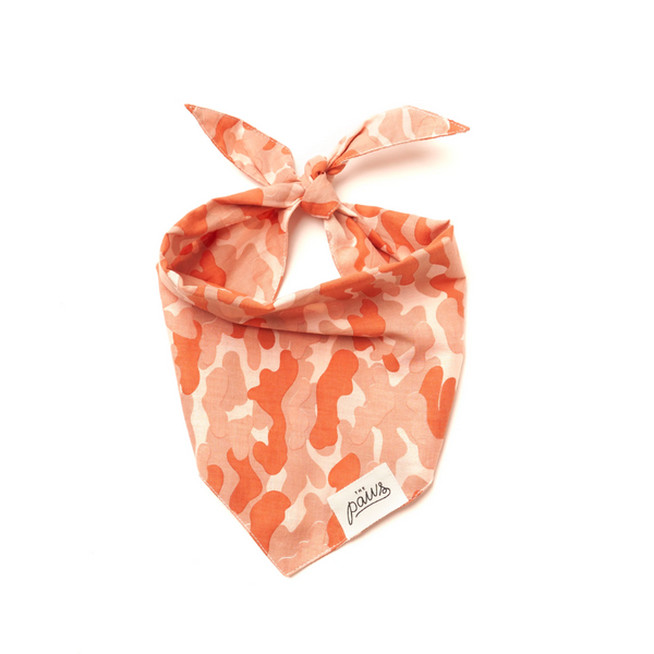 Handcrafted Bolga Pet Basket - Medium