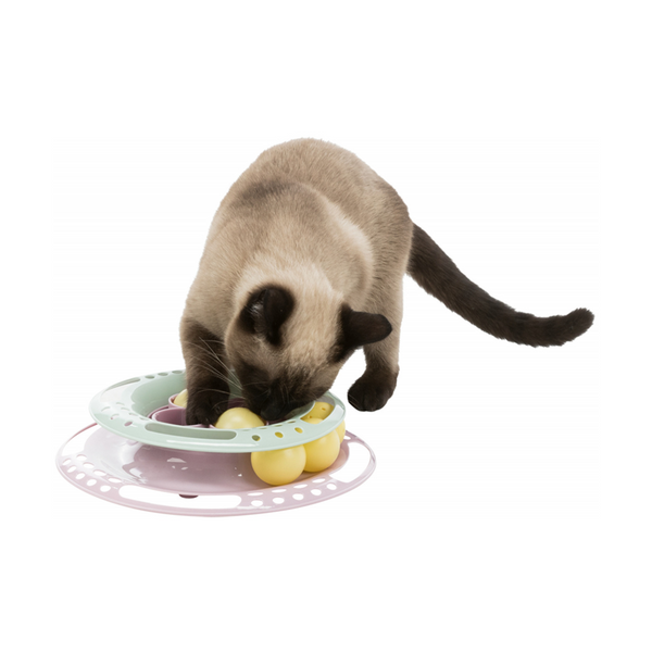 Play Circle Cat Toy