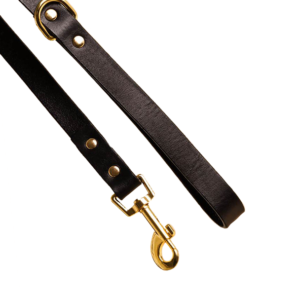 Sable Leather Dog Leash
