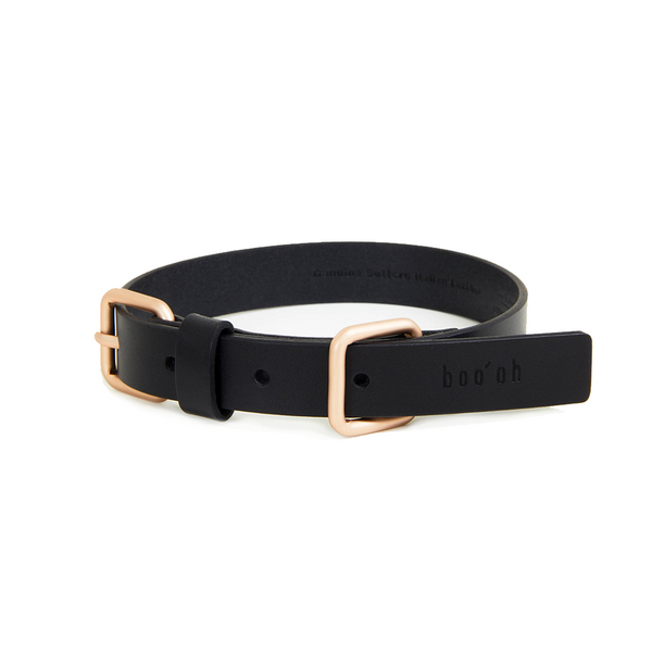 Lumi Dog Collar - Black