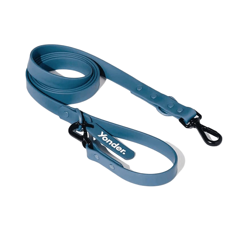 BLUE ADVENTURE LEAD