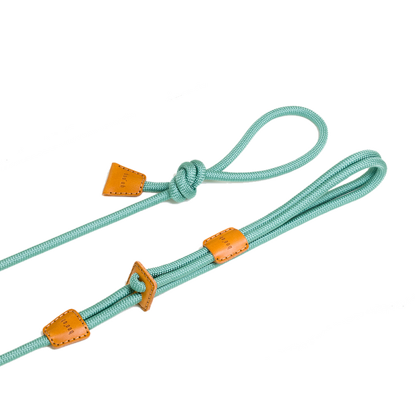 Ray Dog Harness - Mint Green