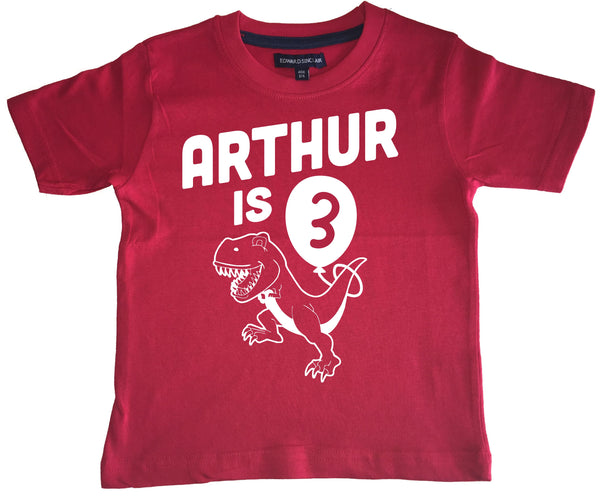 Personalised Birthday Dinosaur Children's T Shirt with Name and Age