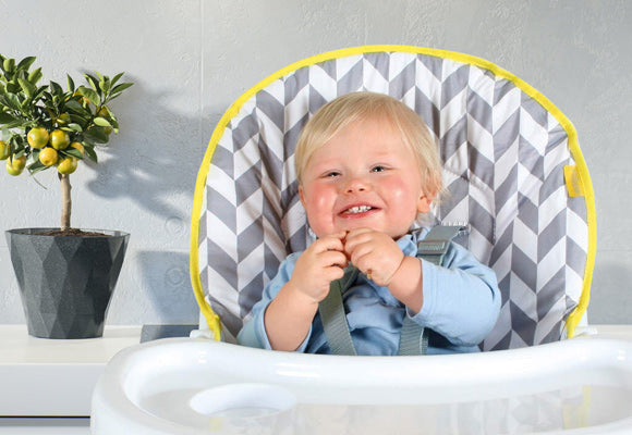 My Babiie Compact Highchairs