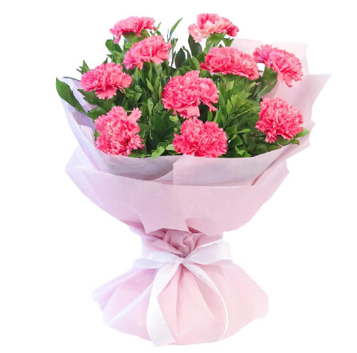 10 Pink Carnations Bouquet - Carnations Florist Malaysia