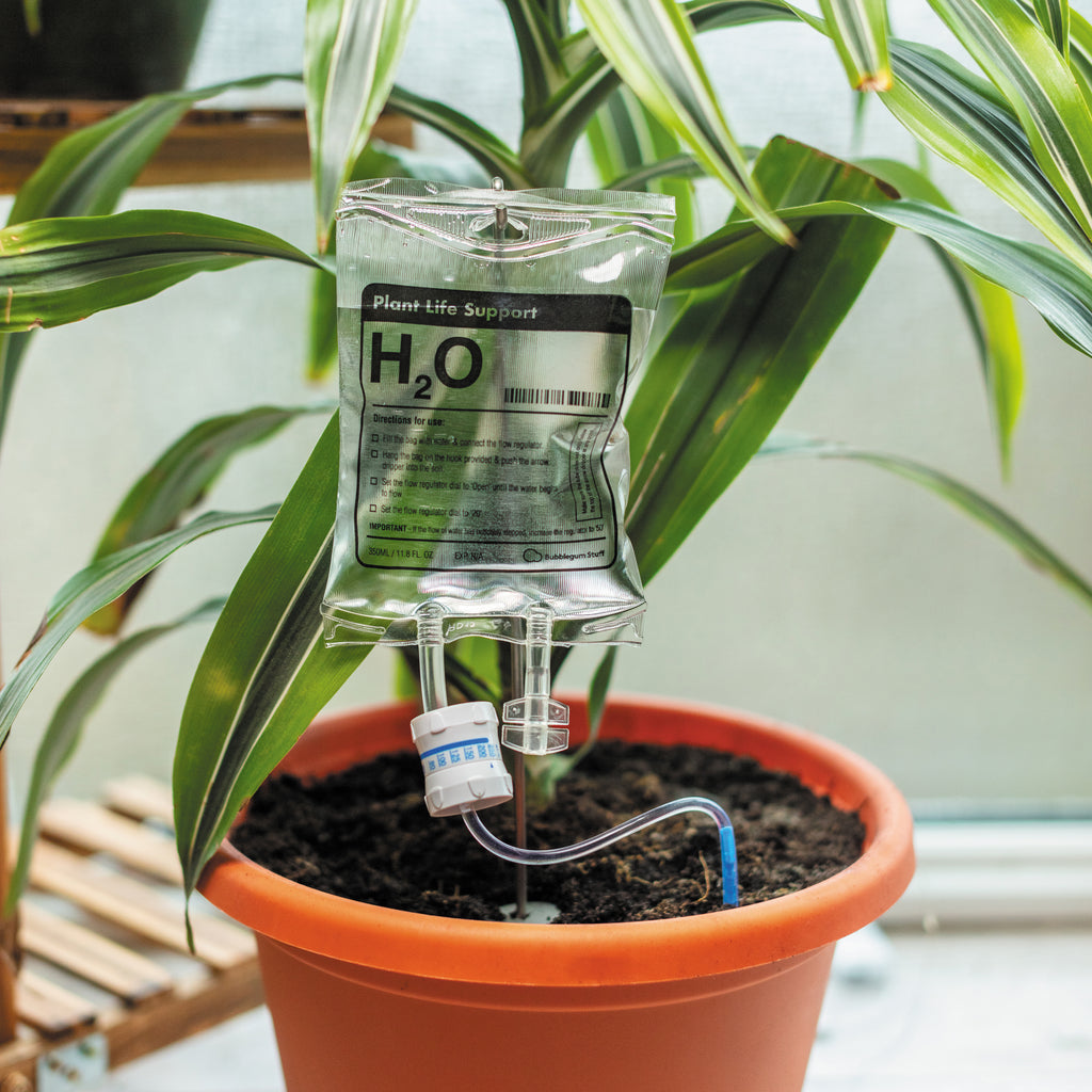 Plant life support in plant pot