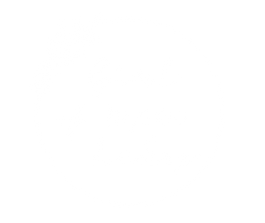 Girl of 10,000 Lakes