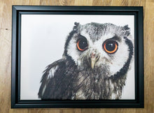 Load image into Gallery viewer, GLEAM - FRAMED PRINTED CANVAS