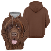 Unisex 3D Graphic Hoodies Animals Dogs Newfoundland Brown