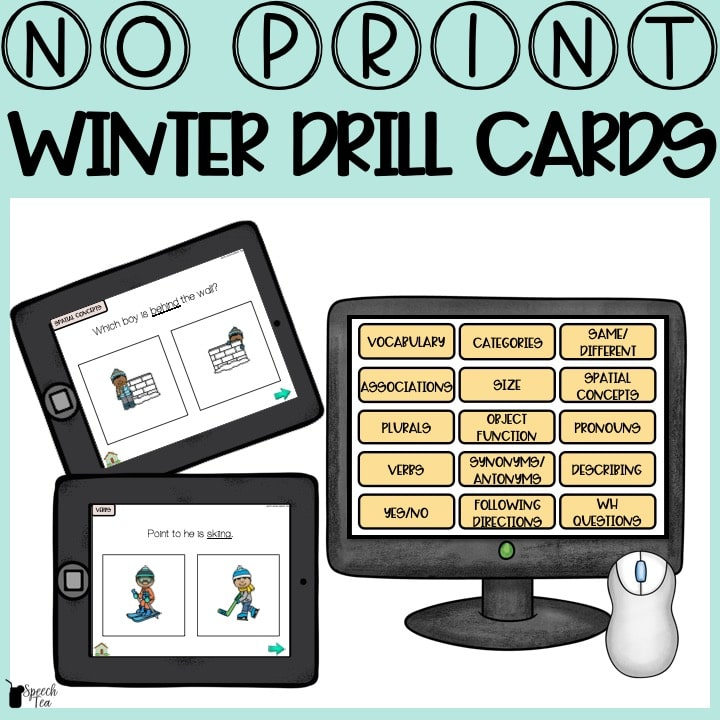 No Print Winter Speech Therapy Drill Cards