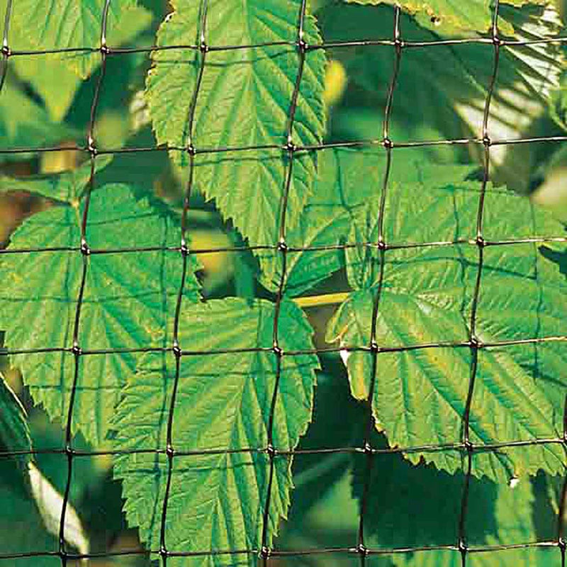 Knowle nets - Fruit Cage Standard Side Net - 60g/m moulded mesh- Leaves background